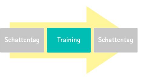 Schattentag oder Training on the job